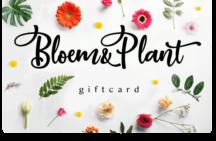 1571062462Bloem-en-Plant-giftcard-vrijstaand